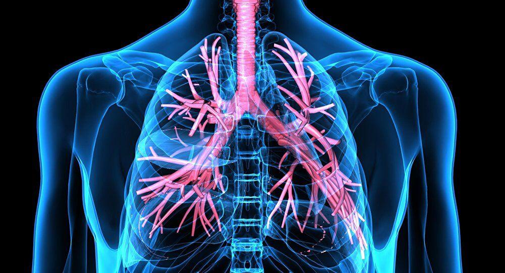 خوراکیهایی که باعث بهبود سلامت ریه ها میشوند